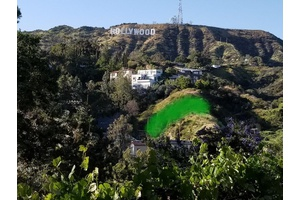 Hollywood Hills Development Opportunity