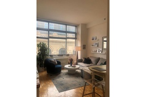 1 Bed/ 1 Bath Penthouse in TriBeCa Luxury Apartment with Roof Deck