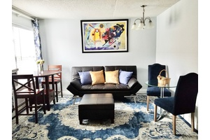 Great One Bedroom Luxury Apartment Furnished