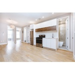 Ditmas Park Beauty! Newly Renovated Four Bedroom Apt Available Now