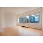 FiDi, Studio / 1 Bath, Luxury Building, Doorman, Bright and Sunny