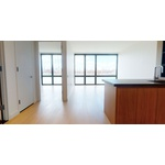 No Fee, Spacious 1BR/1BA Luxury Apartment, Perfect Lighting and View. 3 Months Free